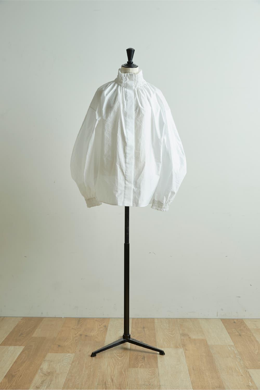 Italy Organza Dress Shirt